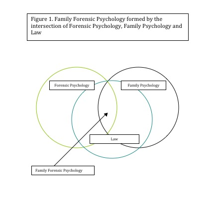 Defining Family Forensic Psychology This Article Is Co Authored By Neil S Grossman Ph D Who Practices On Long Island